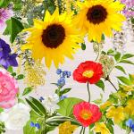 福島で咲いた花々をモチーフにしたスカーフ発売